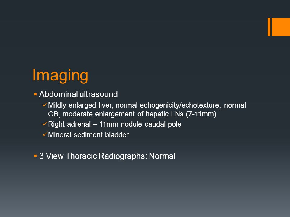 Imaging  Abdominal ultrasound Mildly enlarged liver, normal echogenicity/echotexture, normal GB, moderate enlargement of hepatic LNs (7-11mm) Right adrenal – 11mm nodule caudal pole Mineral sediment bladder  3 View Thoracic Radiographs: Normal