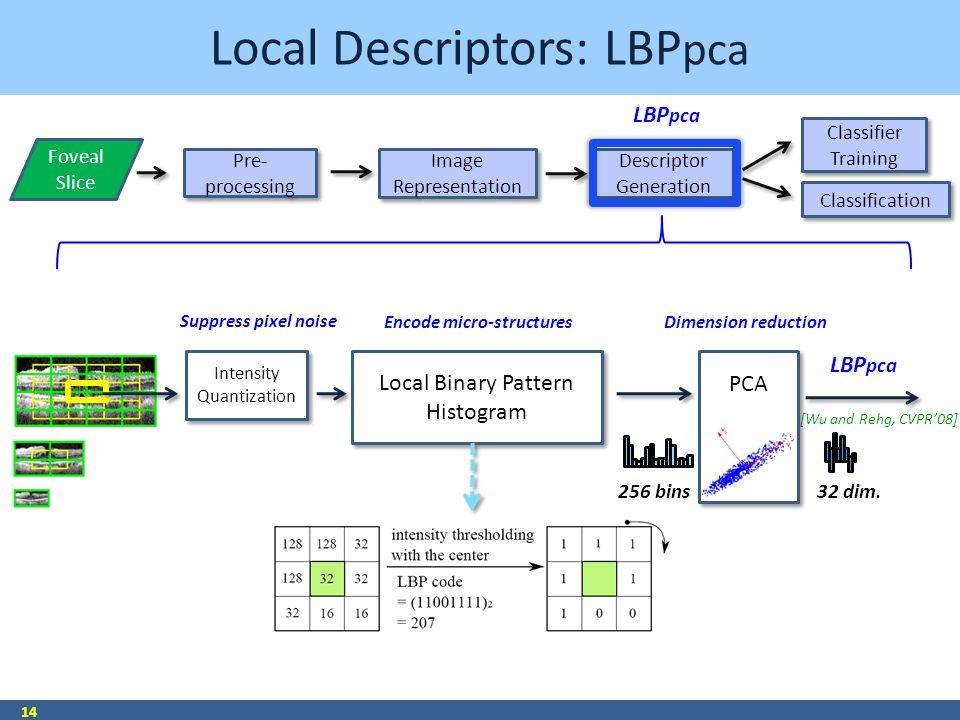 Local Descriptors: LBP pca 14 Encode micro-structures 256 bins32 dim. Pre- processing Pre- processing Image Representation Image Representation Descri
