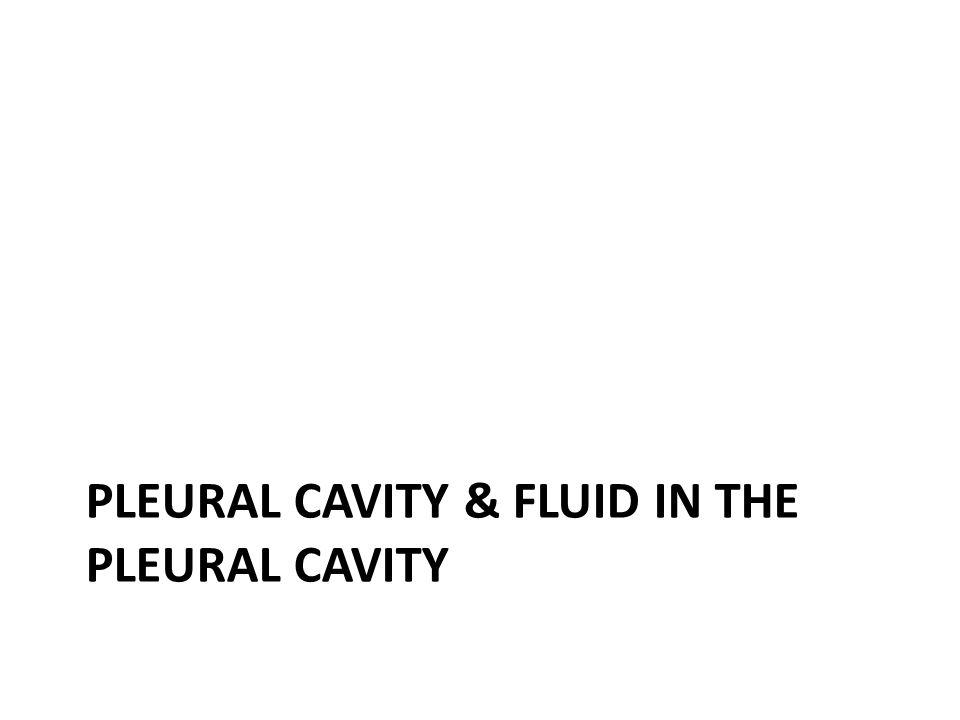 PLEURAL CAVITY & FLUID IN THE PLEURAL CAVITY
