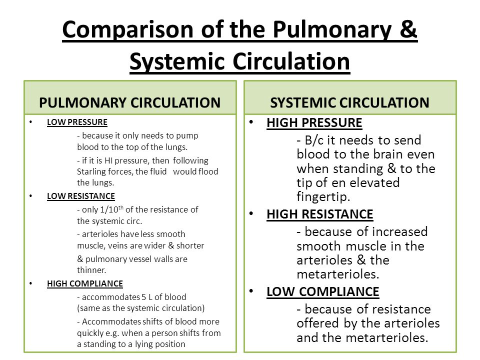Comparison of the Pulmonary & Systemic Circulation PULMONARY CIRCULATION LOW PRESSURE - because it only needs to pump blood to the top of the lungs.