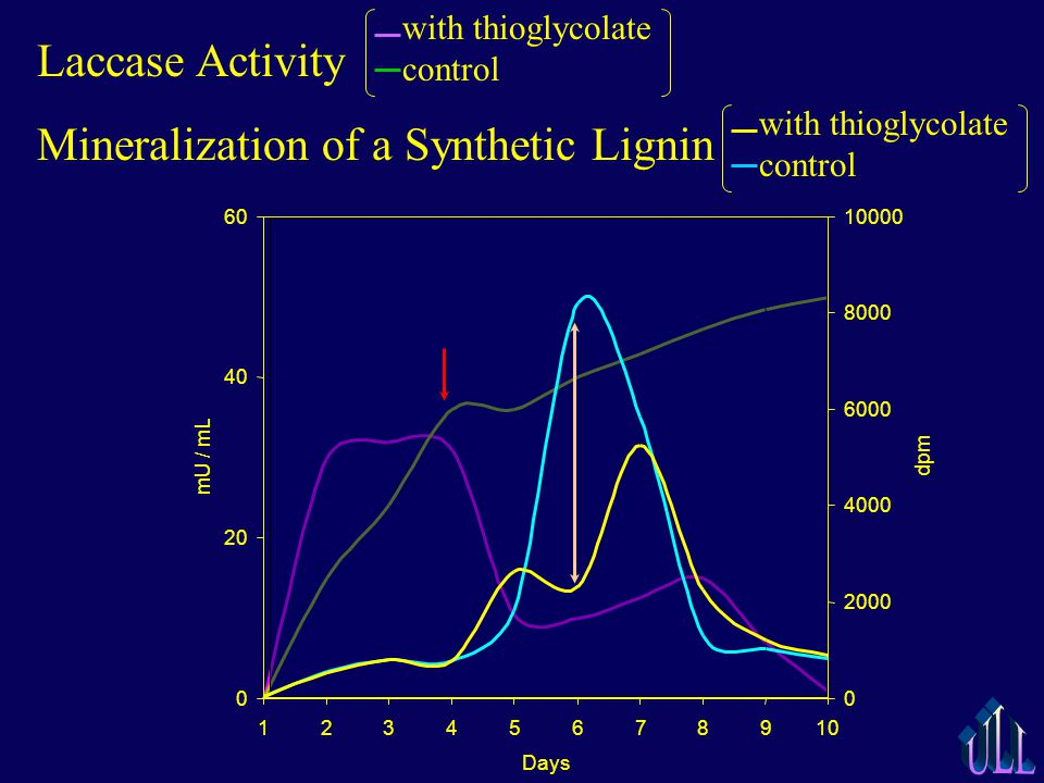 0 2000 4000 6000 8000 10000 dpm Days 0 20 40 60 12345678910 mU / mL Laccase Activity Mineralization of a Synthetic Lignin with thioglycolate control
