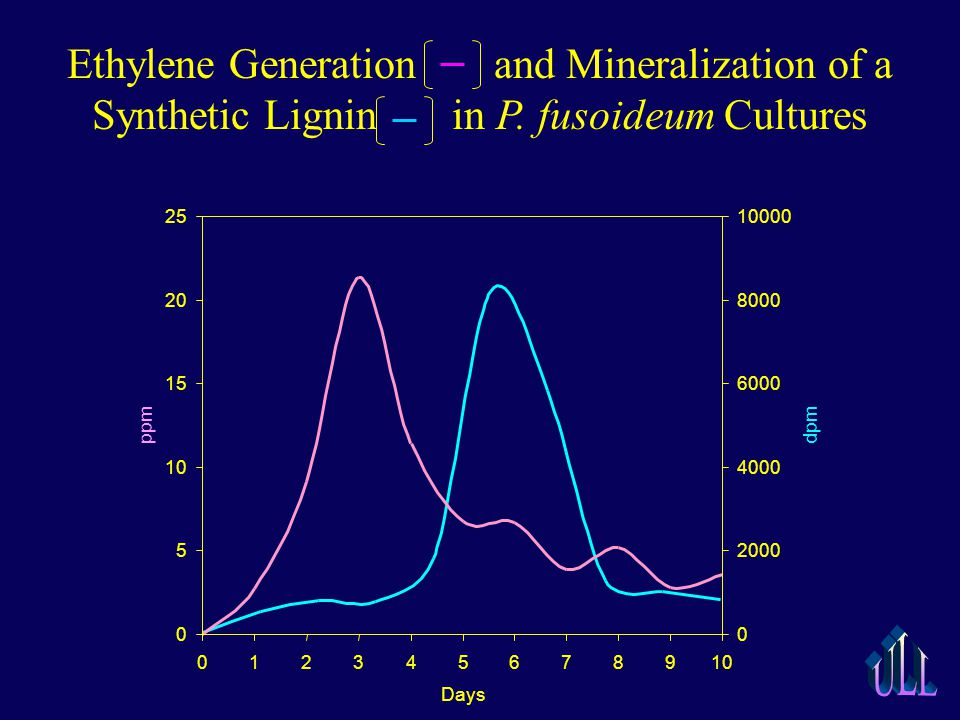 Ethylene Generation and Mineralization of a Synthetic Lignin in P.
