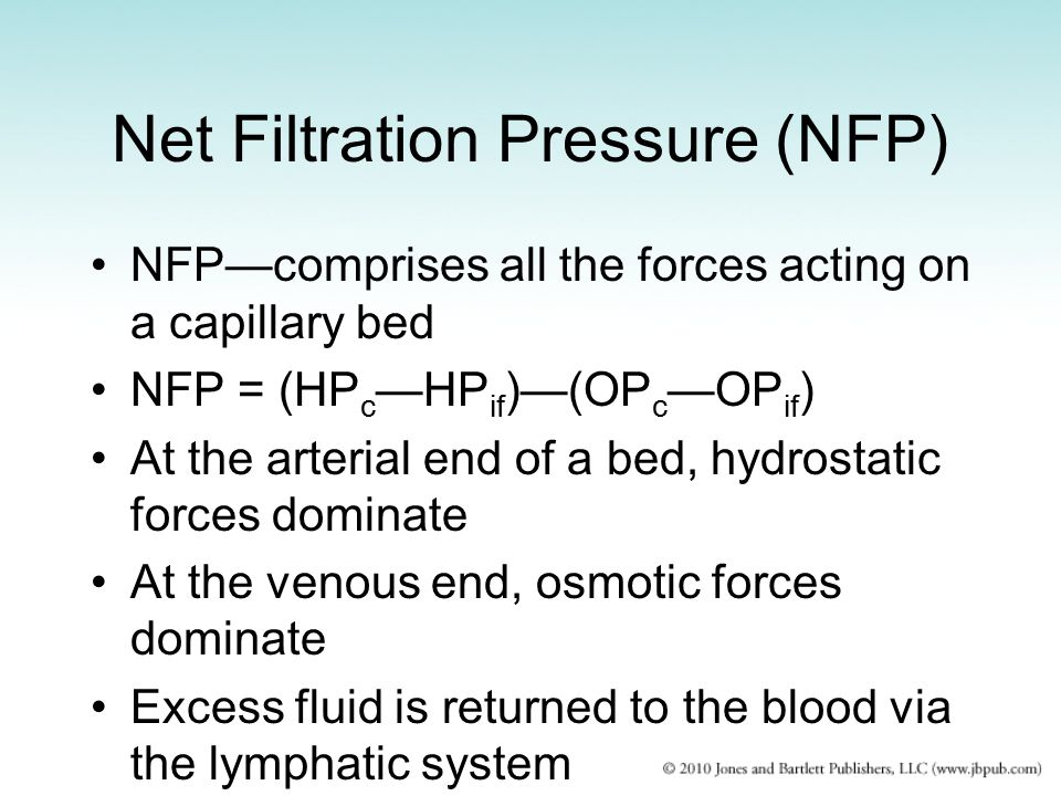 Net Filtration Pressure (NFP) NFP—comprises all the forces acting on a capillary bed NFP = (HP c —HP if )—(OP c —OP if ) At the arterial end of a bed,