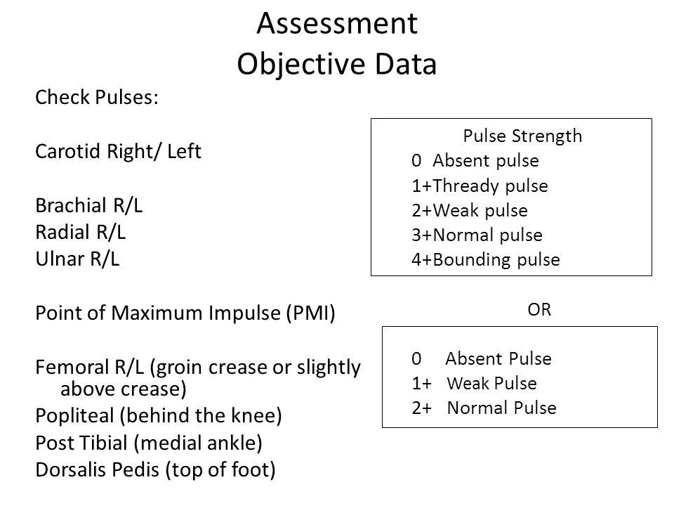 Assessment Objective Data Check Pulses: Carotid Right/ Left Brachial R/L Radial R/L Ulnar R/L Point of Maximum Impulse (PMI) Femoral R/L (groin crease