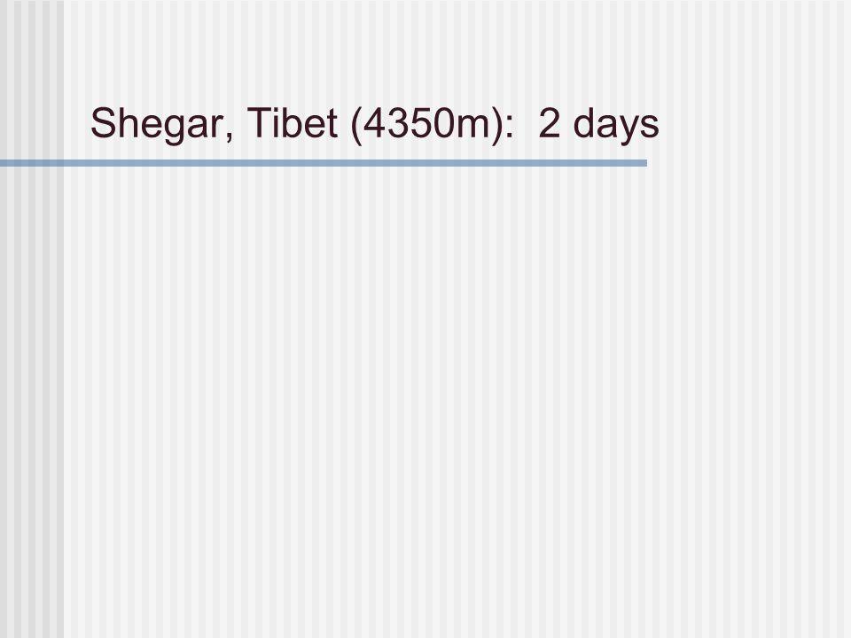 Shegar, Tibet (4350m): 2 days