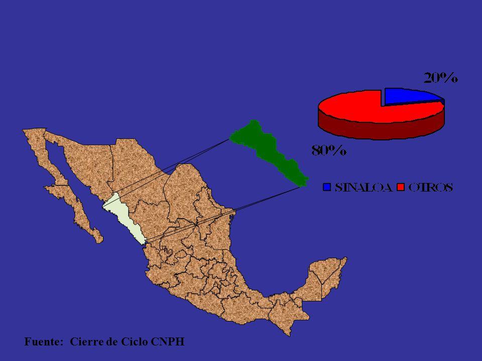 Primer Lugar Nacional en Exportación de Hortalizas Fuente: Cierre de Ciclo CNPH