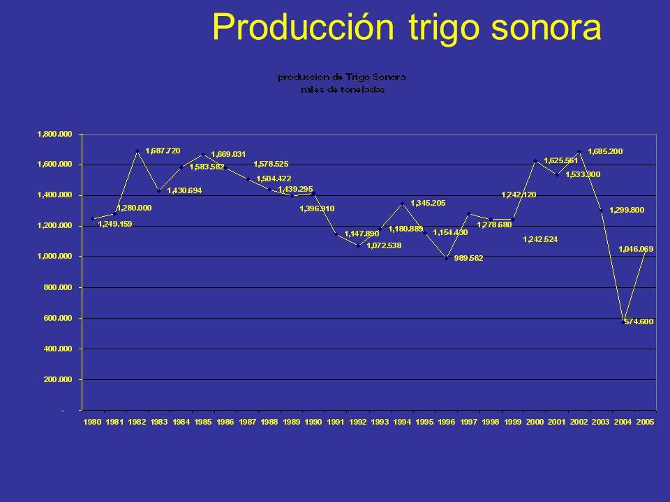 Producción trigo sonora