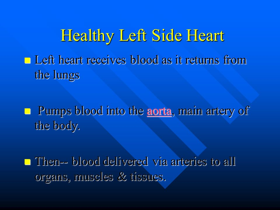 Healthy Left Side Heart Healthy Left Side Heart Left heart receives blood as it returns from the lungs Left heart receives blood as it returns from the lungs Pumps blood into the aorta, main artery of the body.