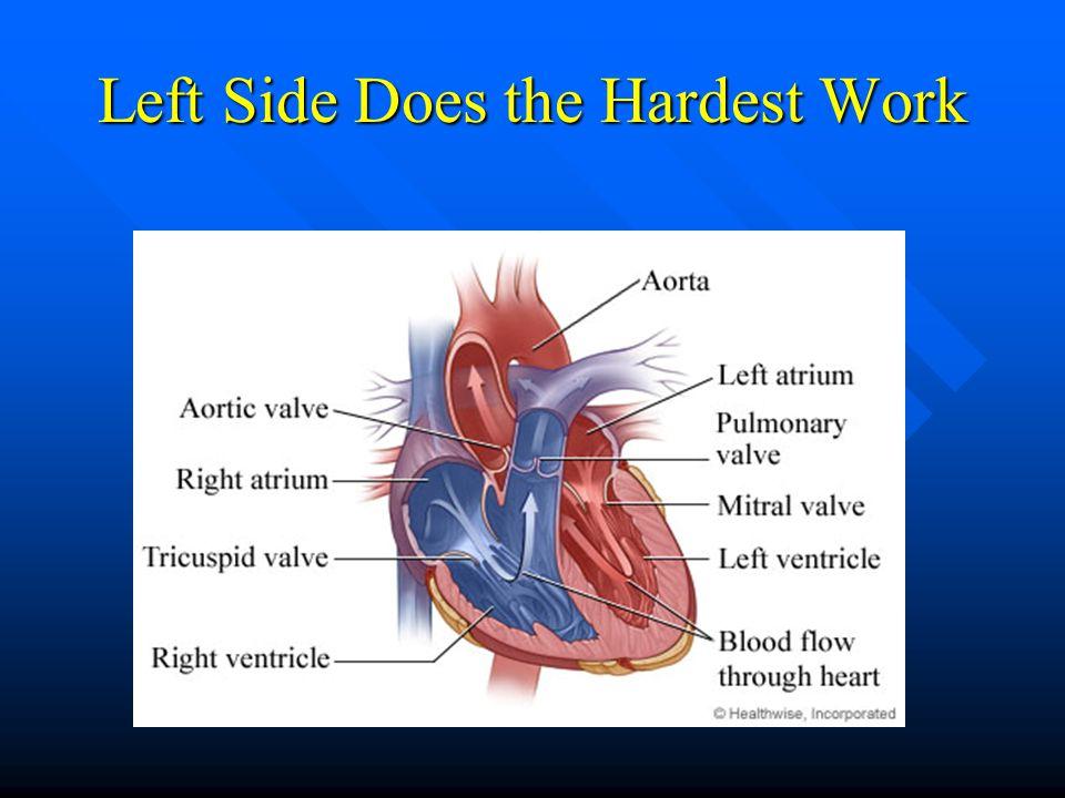 Left Side Does the Hardest Work