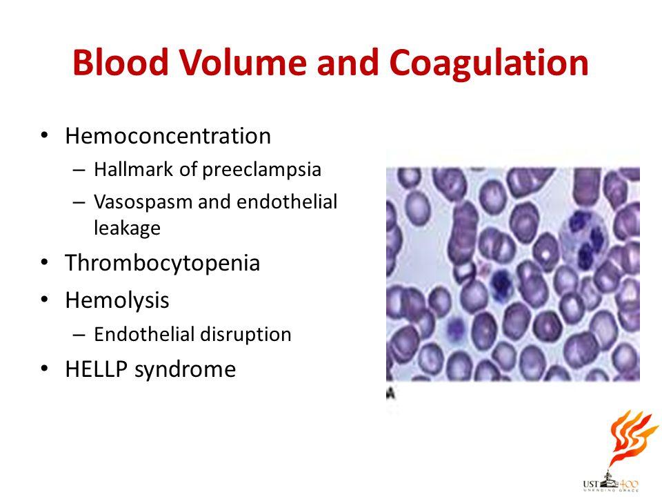 Blood Volume and Coagulation Hemoconcentration – Hallmark of preeclampsia – Vasospasm and endothelial leakage Thrombocytopenia Hemolysis – Endothelial