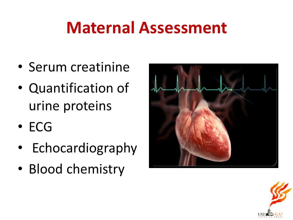 Maternal Assessment Serum creatinine Quantification of urine proteins ECG Echocardiography Blood chemistry
