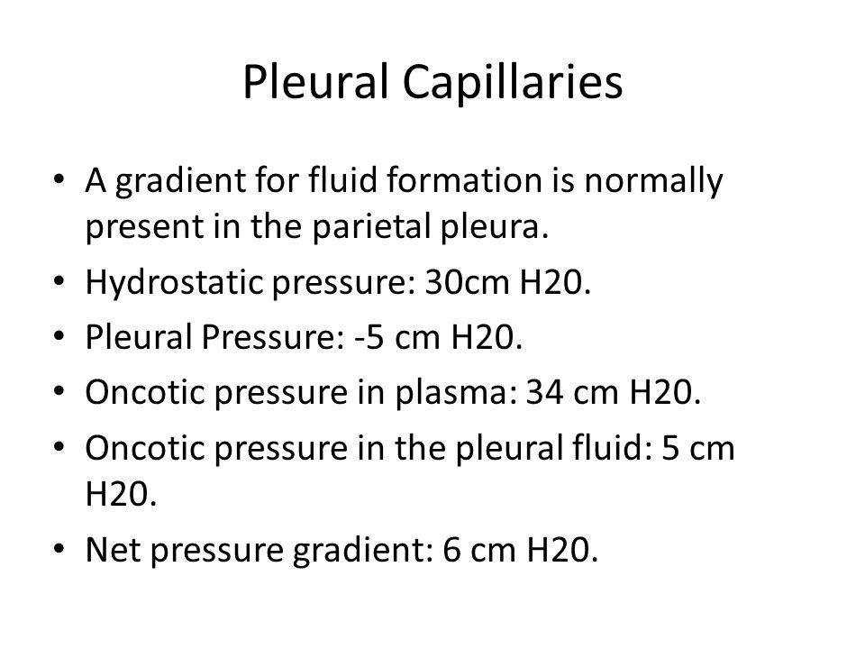Pleural Capillaries A gradient for fluid formation is normally present in the parietal pleura. Hydrostatic pressure: 30cm H20. Pleural Pressure: -5 cm