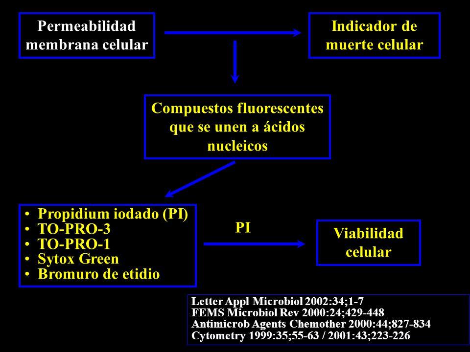 Permeabilidad membrana celular Indicador de muerte celular Compuestos fluorescentes que se unen a ácidos nucleicos Propidium iodado (PI) TO-PRO-3 TO-PRO-1 Sytox Green Bromuro de etidio Letter Appl Microbiol 2002:34;1-7 FEMS Microbiol Rev 2000:24;429-448 Antimicrob Agents Chemother 2000:44;827-834 Cytometry 1999:35;55-63 / 2001:43;223-226 Viabilidad celular PI