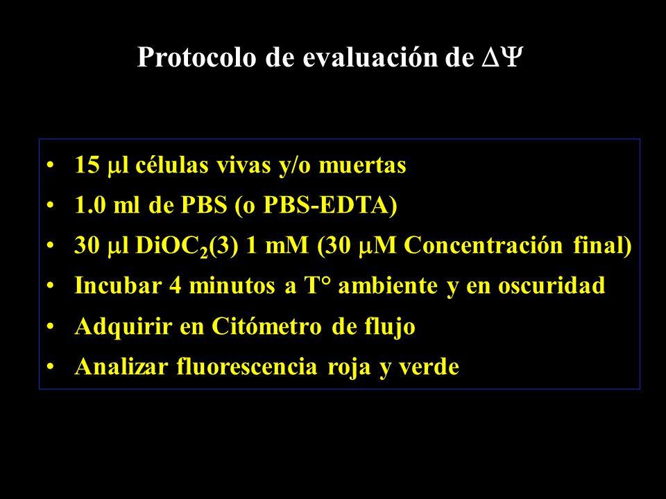 15  l células vivas y/o muertas 1.0 ml de PBS (o PBS-EDTA) 30  l DiOC 2 (3) 1 mM (30  M Concentración final) Incubar 4 minutos a T° ambiente y en oscuridad Adquirir en Citómetro de flujo Analizar fluorescencia roja y verde Protocolo de evaluación de 