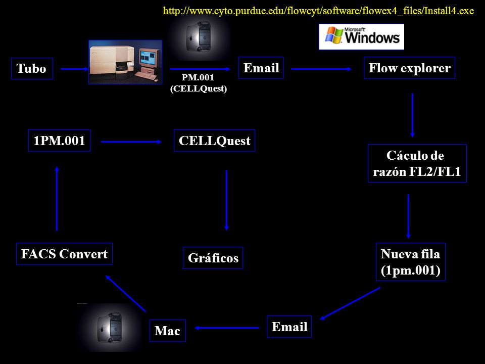 Tubo PM.001 (CELLQuest) EmailFlow explorer Cáculo de razón FL2/FL1 Nueva fila (1pm.001) Email Mac FACS Convert 1PM.001CELLQuest Gráficos http://www.cyto.purdue.edu/flowcyt/software/flowex4_files/Install4.exe