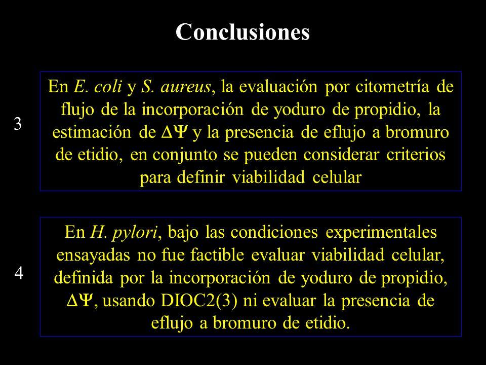 En E. coli y S.