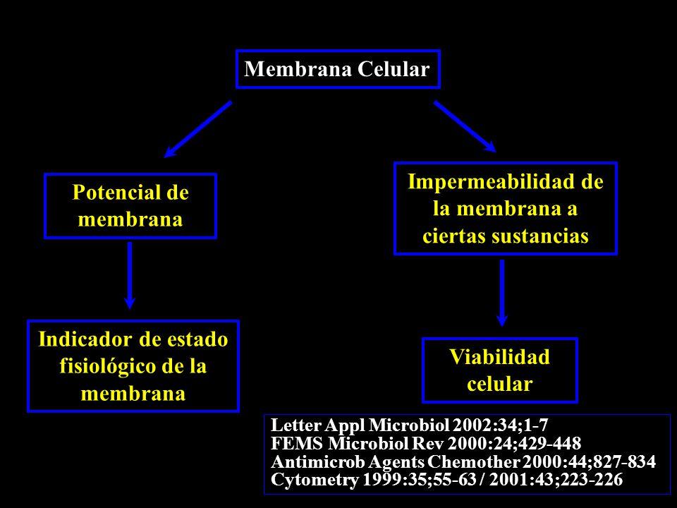 Membrana Celular Potencial de membrana Indicador de estado fisiológico de la membrana Impermeabilidad de la membrana a ciertas sustancias Viabilidad celular Letter Appl Microbiol 2002:34;1-7 FEMS Microbiol Rev 2000:24;429-448 Antimicrob Agents Chemother 2000:44;827-834 Cytometry 1999:35;55-63 / 2001:43;223-226
