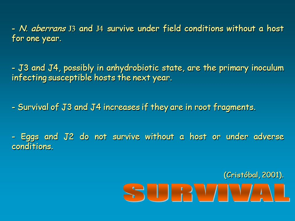 - N. aberrans J3 and J4 survive under field conditions without a host for one year.