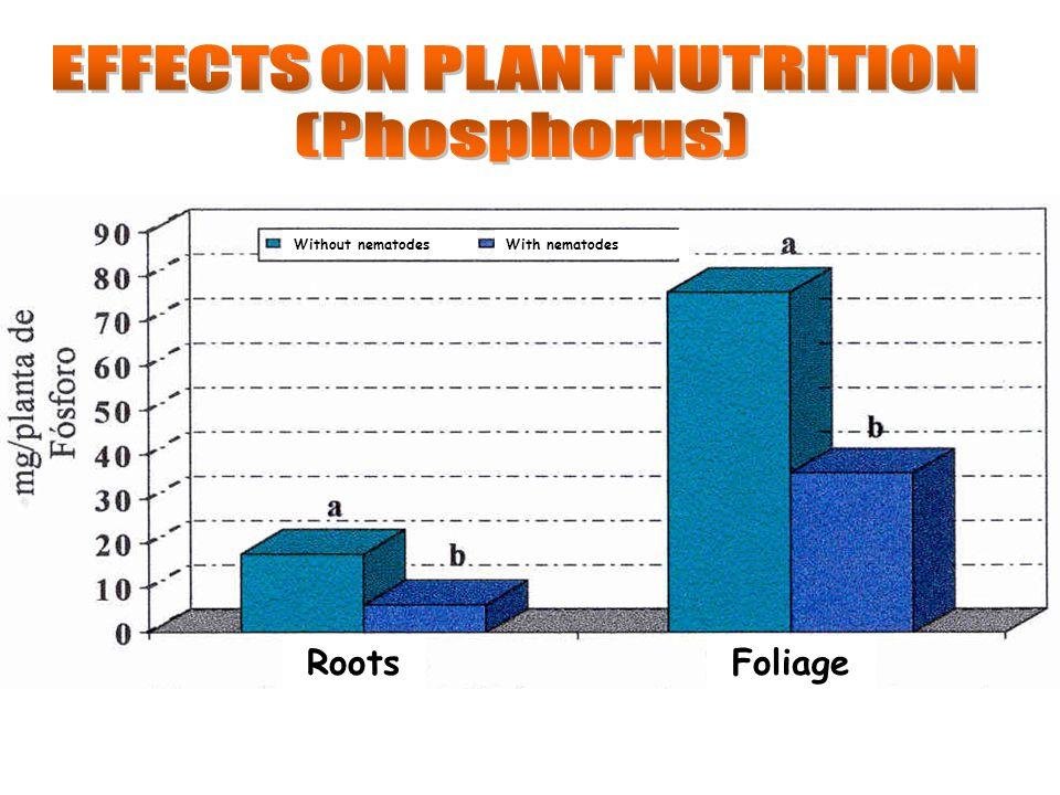 Without nematodesWith nematodes RootsFoliage
