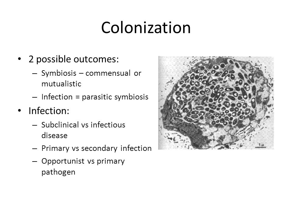 What determines outcome of infection.