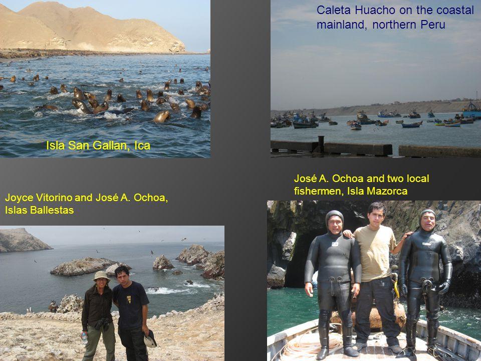 Isla San Gallan, Ica Caleta Huacho on the coastal mainland, northern Peru José A.