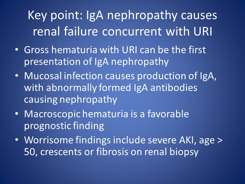 Key point: IgA nephropathy causes renal failure concurrent with URI Gross hematuria with URI can be the first presentation of IgA nephropathy Mucosal