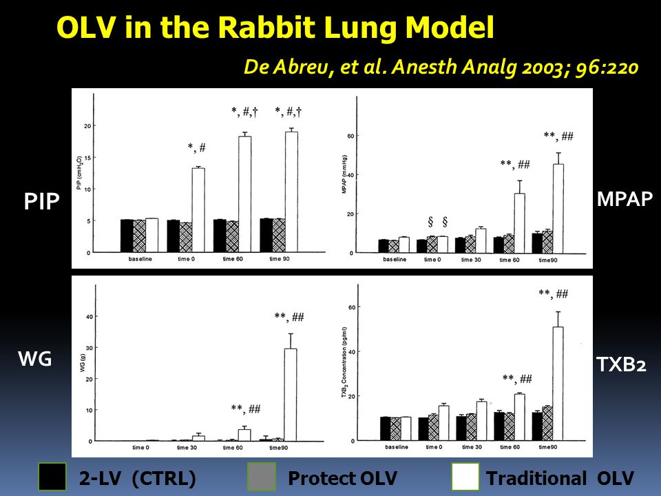 OLV in the Rabbit Lung Model De Abreu, et al. Anesth Analg 2003; 96:220 PIP MPAP TXB2 WG 2-LV (CTRL)Protect OLVTraditional OLV