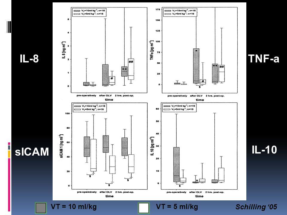 IL-8TNF-a sICAM IL-10 VT = 10 ml/kgVT = 5 ml/kg Schilling '05