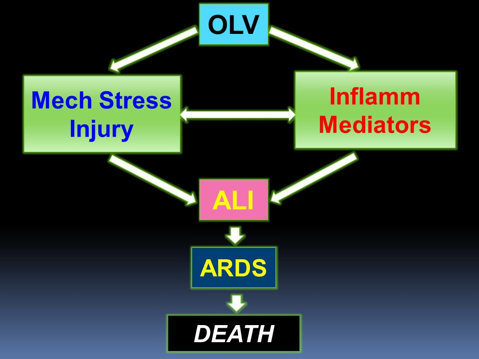 OLV Mech Stress Injury ALI ARDS DEATH Inflamm Mediators