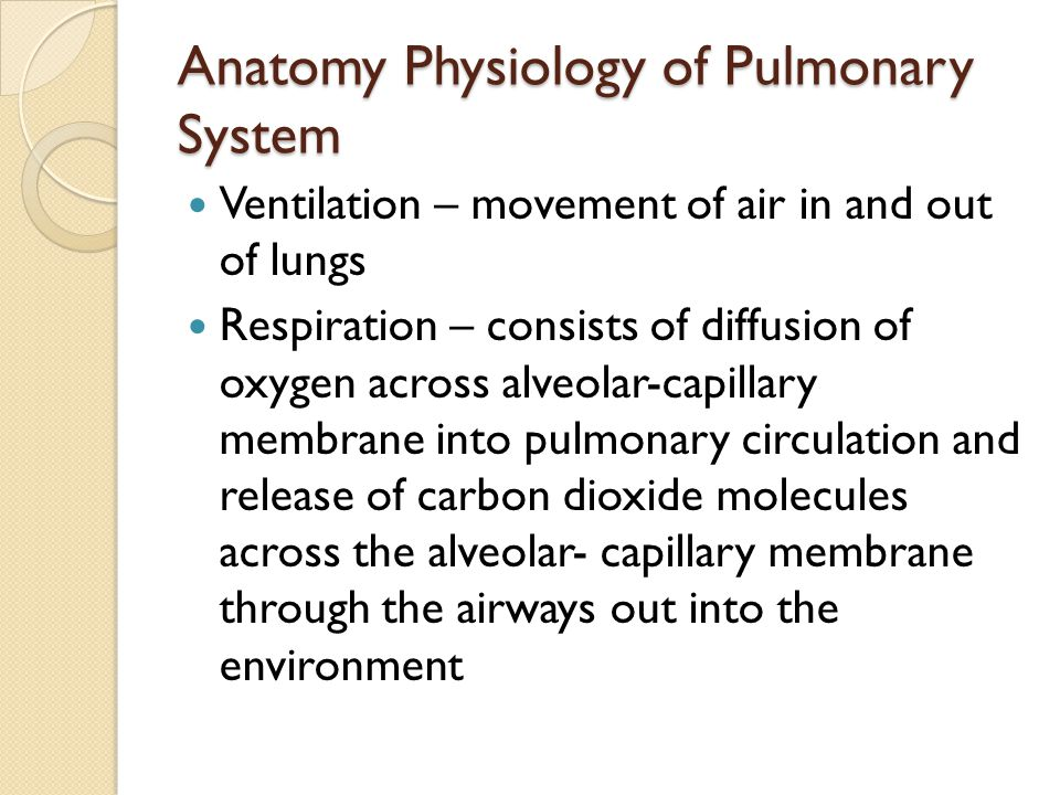 Pathophysiology of Acute Respiratory Failure Alteration in oxygenation is most common form of Acute Respiratory Failure ◦ Perfusion (Q)exceeds ventilation (V) ◦ A low V/Q ratio causes decreased oxygenation of venous blood & a mixing of less oxygenated blood with arterial blood ◦ Reduced arterial oxygen value (hypoxemia) Hypoventilation