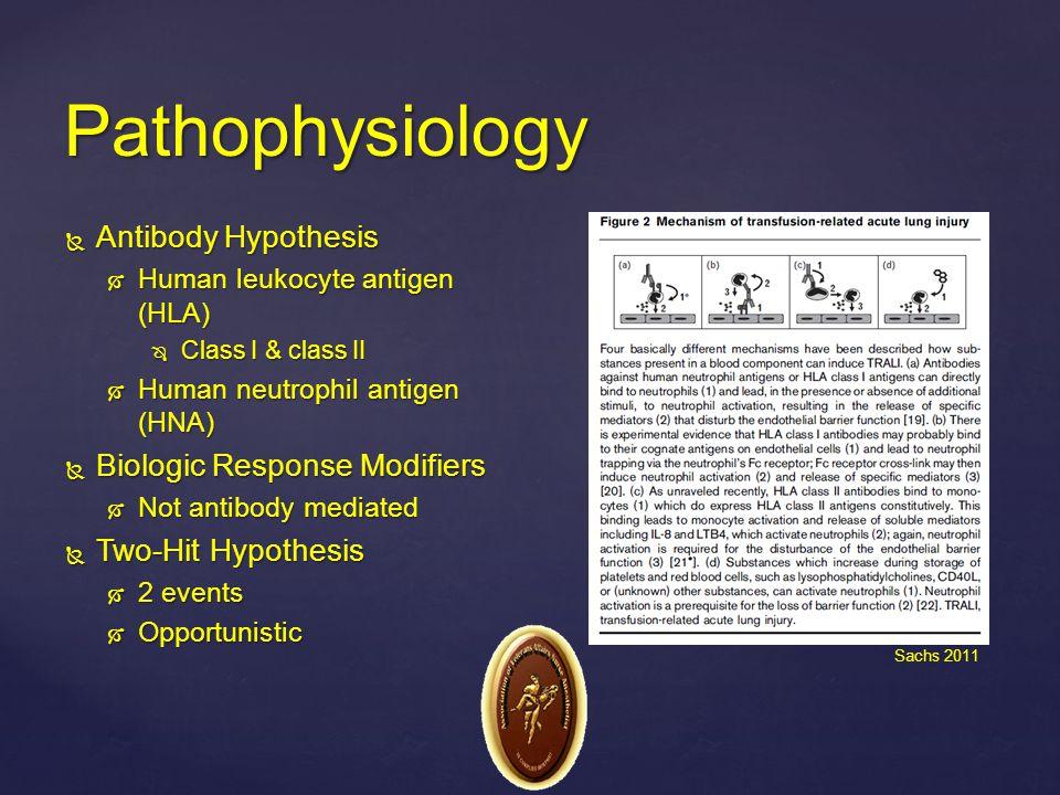  Antibody Hypothesis  Human leukocyte antigen (HLA)  Class I & class II  Human neutrophil antigen (HNA)  Biologic Response Modifiers  Not antibo