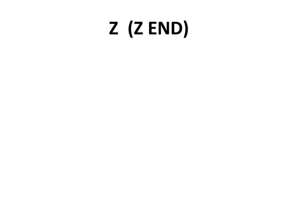 Z (Z END)