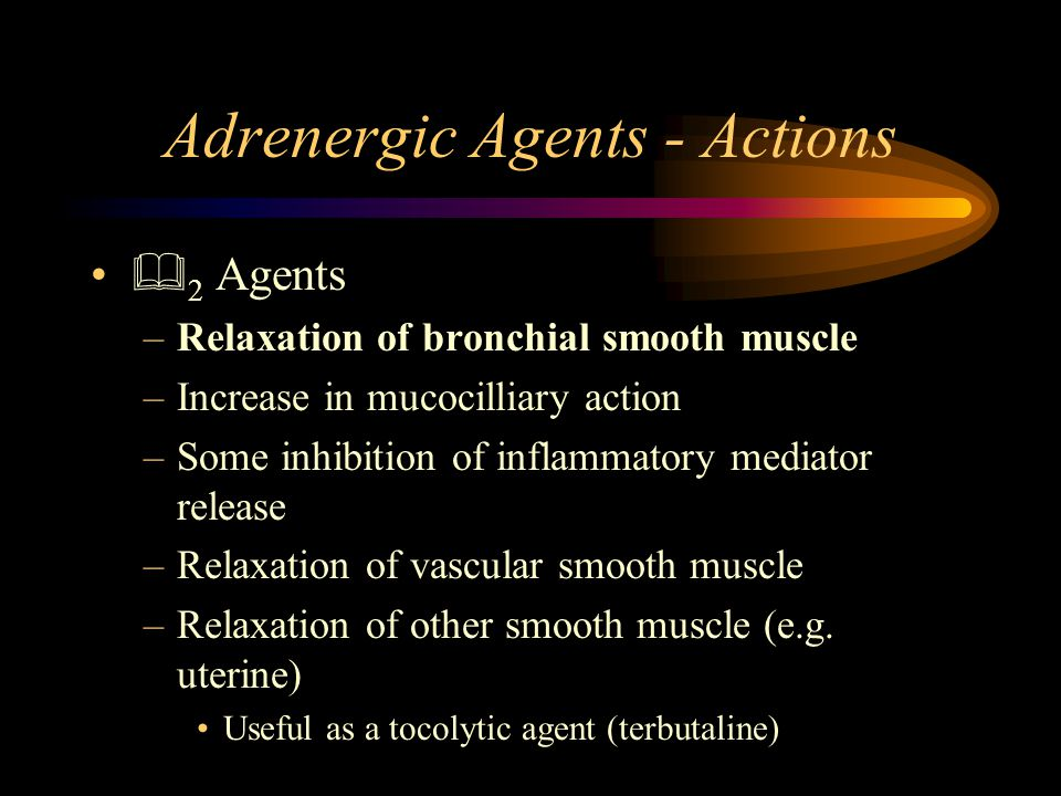 Adrenergic Agents - Actions  2 Agents –Relaxation of bronchial smooth muscle –Increase in mucocilliary action –Some inhibition of inflammatory mediator release –Relaxation of vascular smooth muscle –Relaxation of other smooth muscle (e.g.