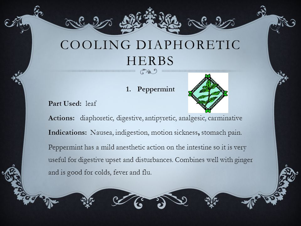 COOLING DIAPHORETIC HERBS 1.Peppermint Part Used: leaf Actions: diaphoretic, digestive, antipyretic, analgesic, carminative Indications: Nausea, indigestion, motion sickness, stomach pain.