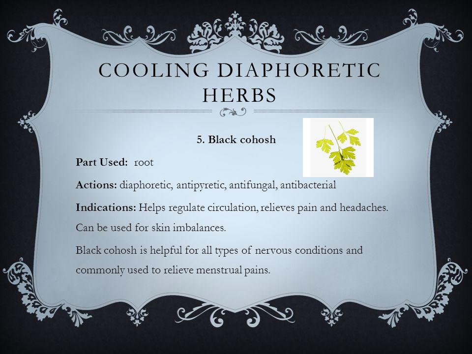 COOLING DIAPHORETIC HERBS 5.