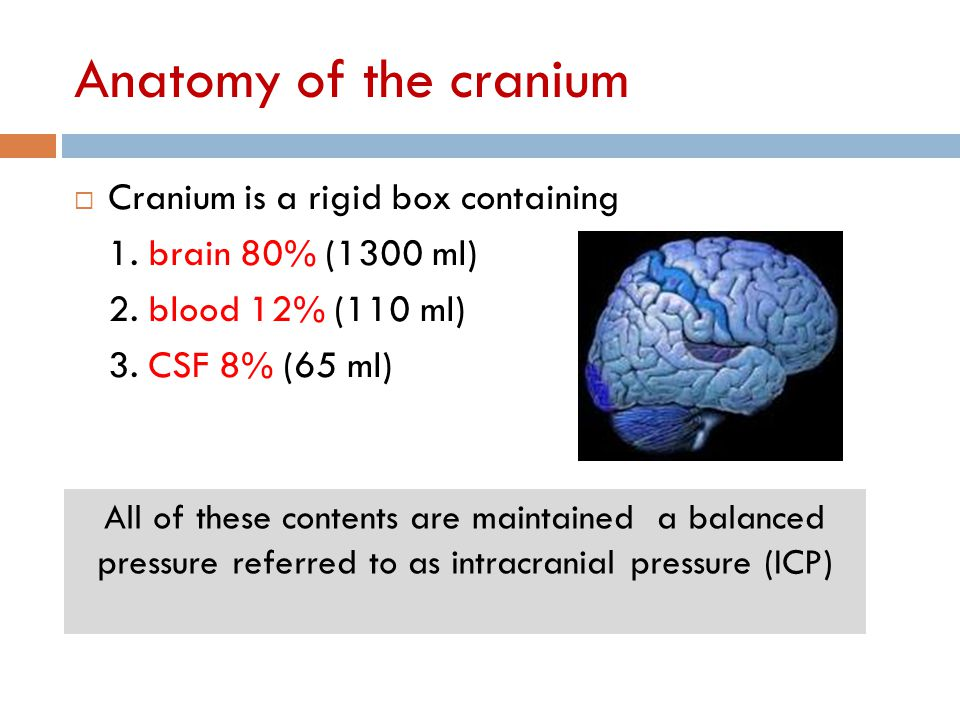 Anatomy of the cranium  Cranium is a rigid box containing 1. brain 80% (1300 ml) 2. blood 12% (110 ml) 3. CSF 8% (65 ml) All of these contents are ma