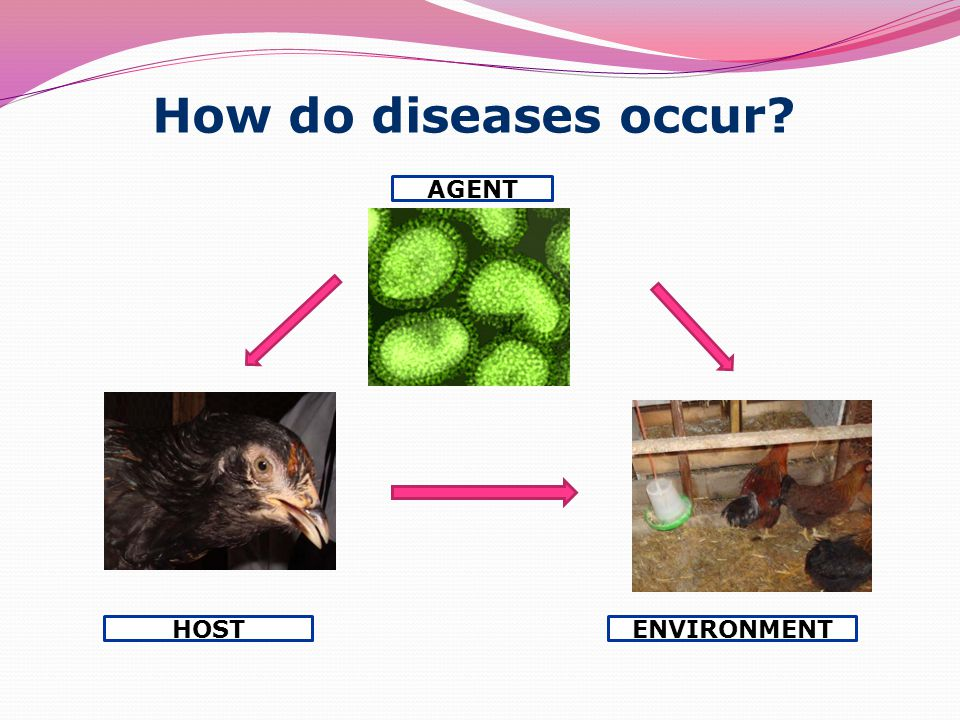 How do diseases occur AGENT ENVIRONMENTHOST