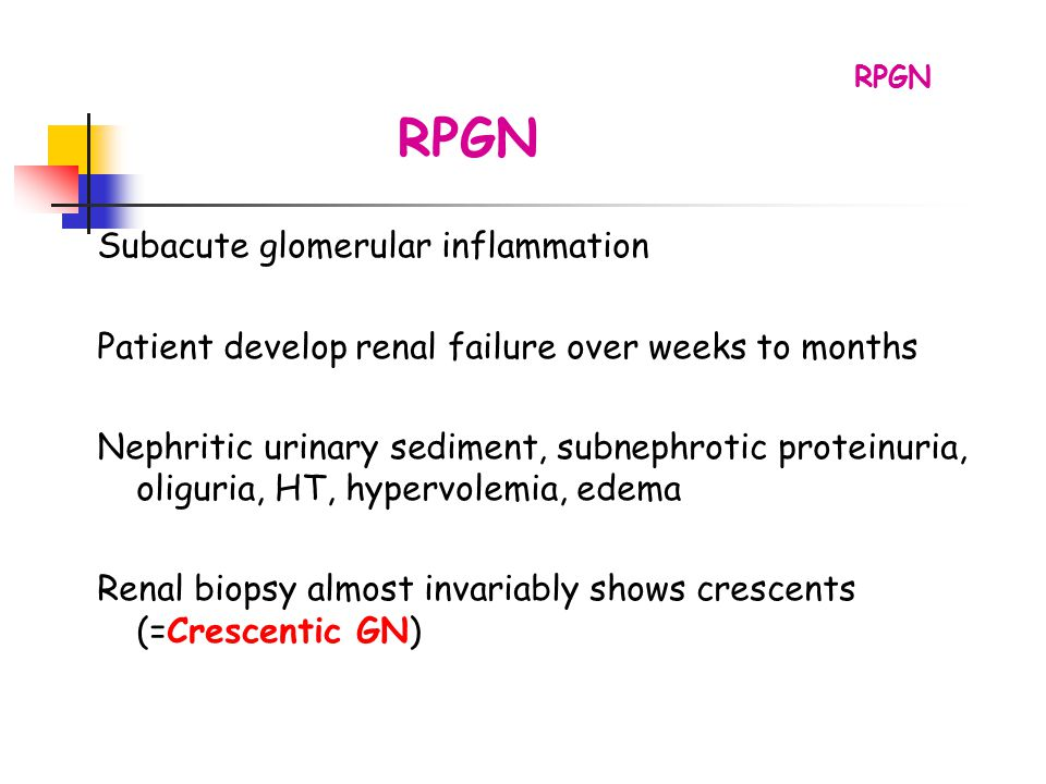 RPGN Subacute glomerular inflammation Patient develop renal failure over weeks to months Nephritic urinary sediment, subnephrotic proteinuria, oliguri