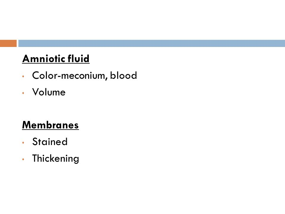 Placenta Weight Staining Adherent clots Structural abnormality Velamentous insertion Edema/ hydropic changes
