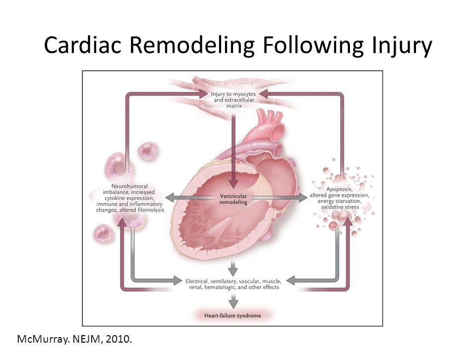 Cardiac Remodeling Following Injury McMurray. NEJM, 2010.