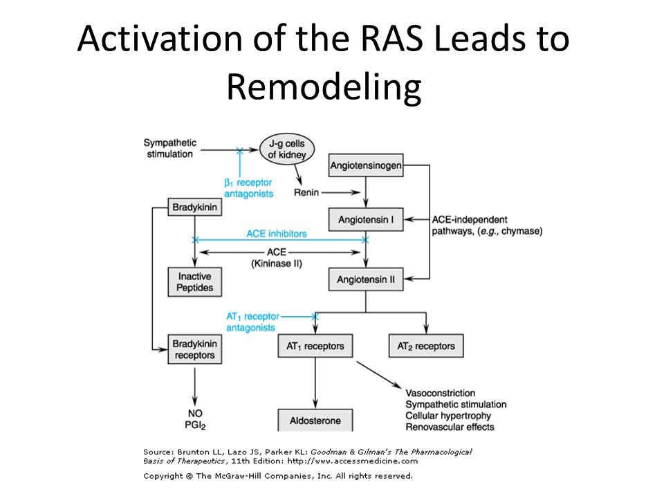 Activation of the RAS Leads to Remodeling