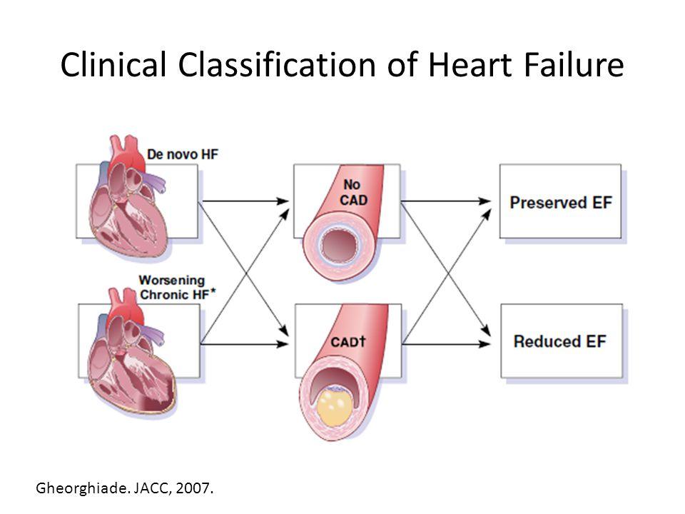 Clinical Classification of Heart Failure Gheorghiade. JACC, 2007.