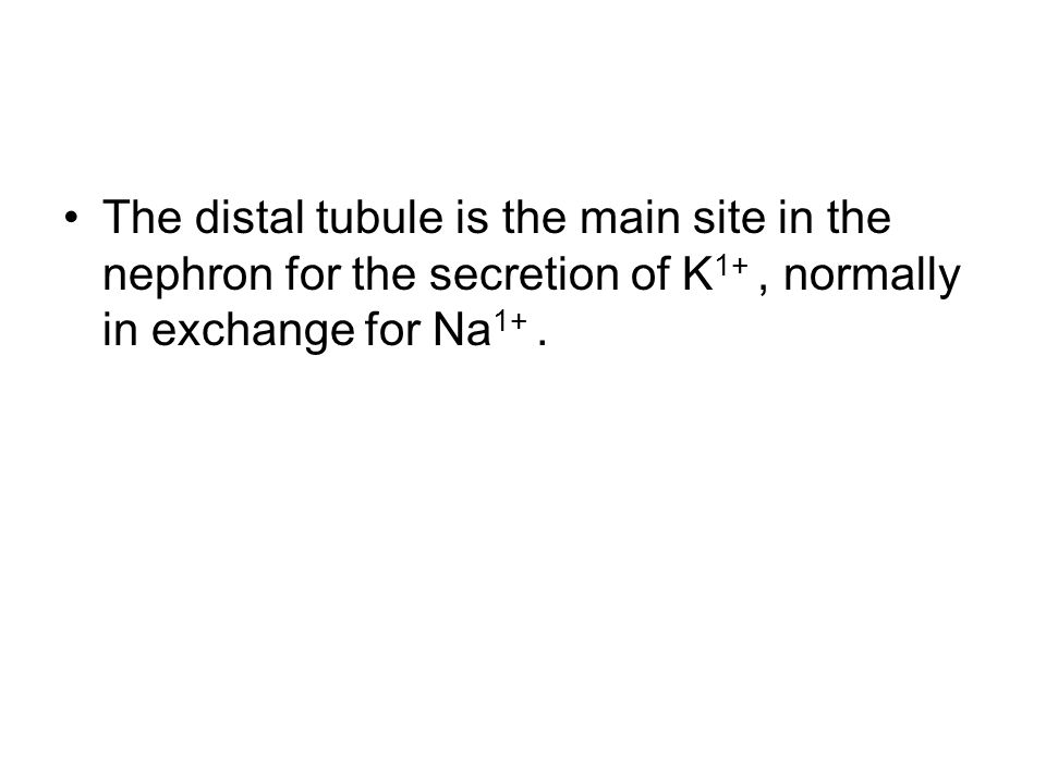 The distal tubule is the main site in the nephron for the secretion of K 1+, normally in exchange for Na 1+.