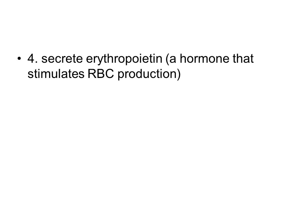 4. secrete erythropoietin (a hormone that stimulates RBC production)