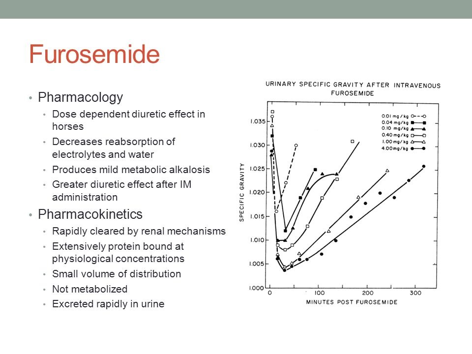 Furosemide Pharmacology Dose dependent diuretic effect in horses Decreases reabsorption of electrolytes and water Produces mild metabolic alkalosis Greater diuretic effect after IM administration Pharmacokinetics Rapidly cleared by renal mechanisms Extensively protein bound at physiological concentrations Small volume of distribution Not metabolized Excreted rapidly in urine
