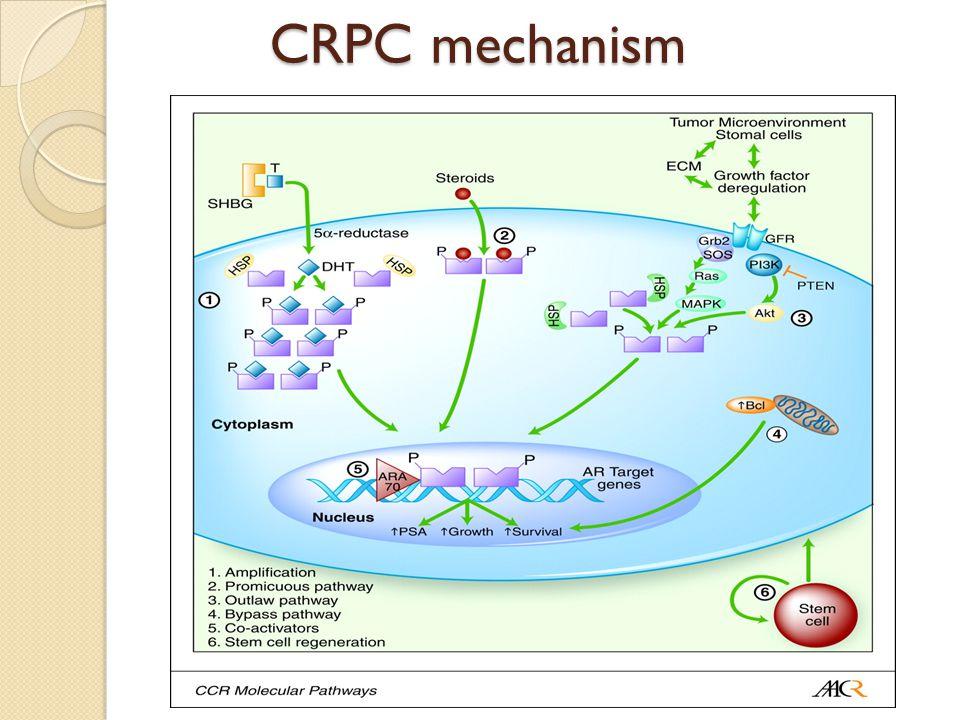 CRPC mechanism