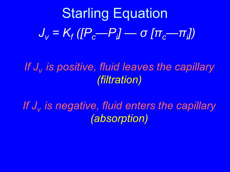 Starling Equation J v = K f ([P c —P i ] — σ [π c —π i ]) If J v is positive, fluid leaves the capillary (filtration) If J v is negative, fluid enters