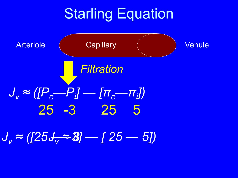 Starling Equation J v ≈ ([P c —P i ] — [π c —π i ]) 2525-35 J v ≈ ([25 — -3] — [ 25 — 5]) ArterioleVenule J v ≈ 8 Filtration Capillary