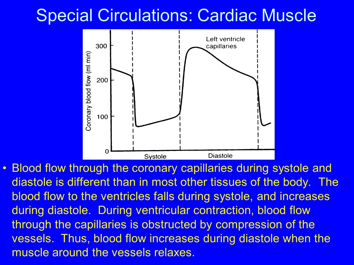 Special Circulations: Cardiac Muscle Blood flow through the coronary capillaries during systole and diastole is different than in most other tissues o
