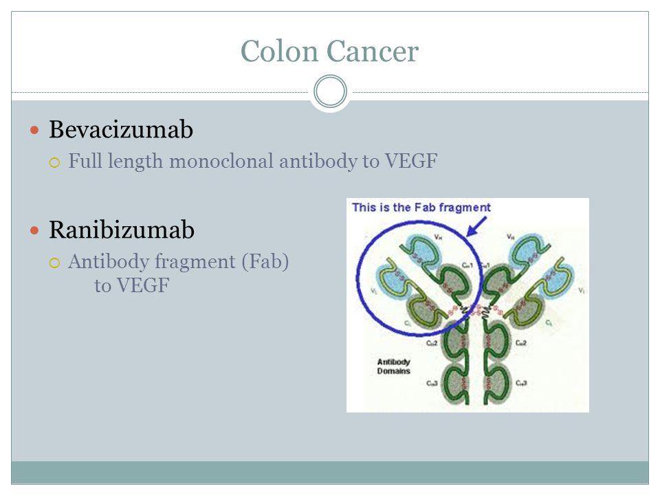 Colon Cancer Bevacizumab  Full length monoclonal antibody to VEGF Ranibizumab  Antibody fragment (Fab) to VEGF